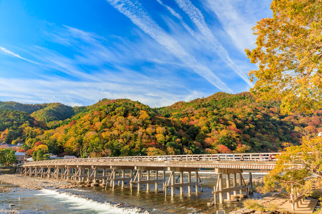 Arashiyama autumn leaves